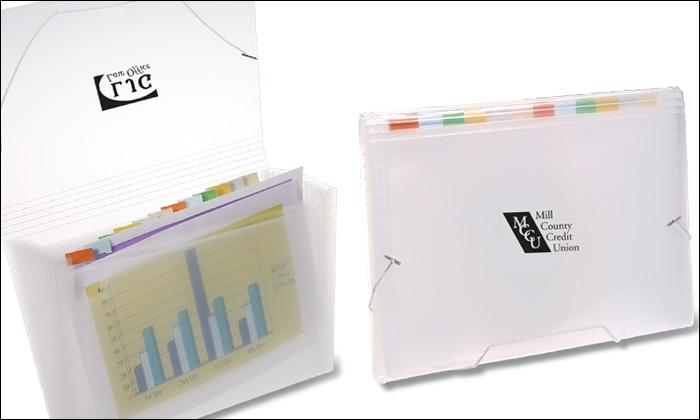 #7266 Translucent Pocket File