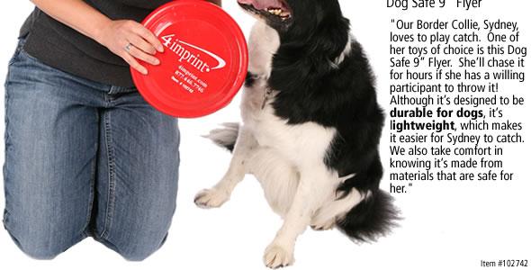 Dog Safe Flyer #102742