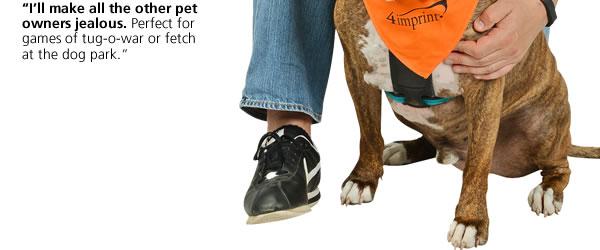 Fetch-It Dog Toy