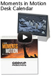 Moments in Motion Desk Calendar