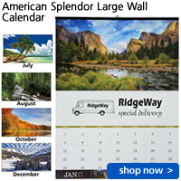 American Splendor Large Wall Calendar